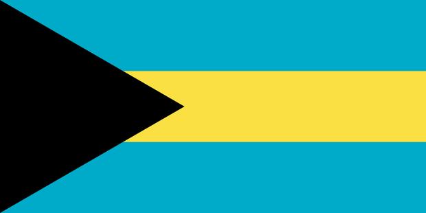 fdp union AfD Bahamas-koalition