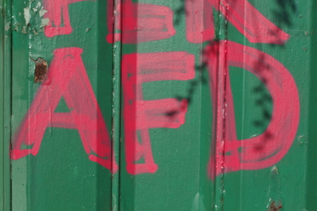 AfD alexander-gauland flüchtlingskrise Alice-Weidel Peter Hausmann Björn Höcke