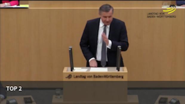 baden-wuerttemberg fdp.die-liberalen AfD
