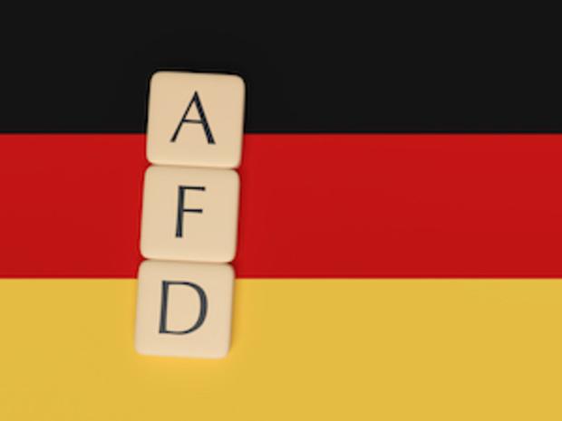spd csu cdu AfD alexander-gauland Alice-Weidel