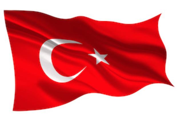 die-gruenen türkei sigmar-gabriel hans-olaf-henkel recep-tayyip-erdogan cem-oezdemir
