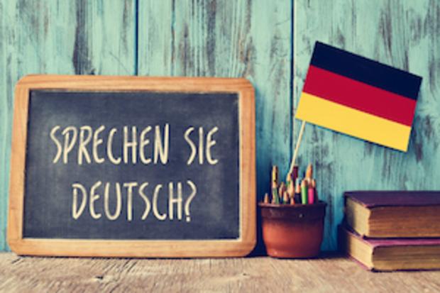 deutscher-bundestag deutsche-sprache AfD