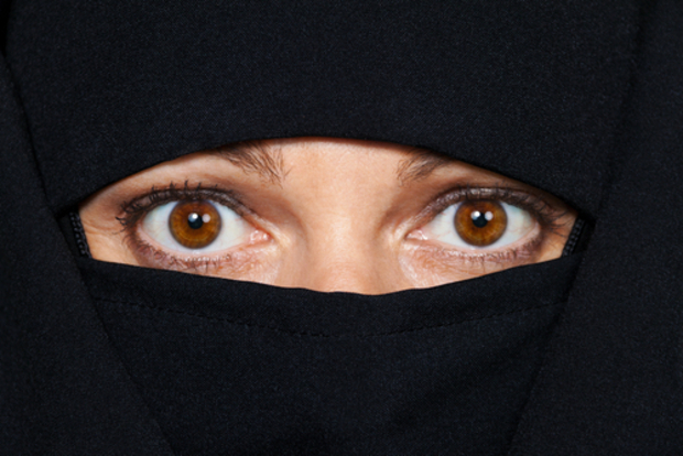 die-gruenen integration migration frauenrechte Österreich immigration globale-migration zentralrat-der-muslime migranten burka AfD sebastian-kurz flüchtlinge Zuwanderung boris-palmer