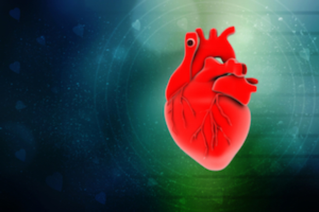 medizin Herzimplantation
