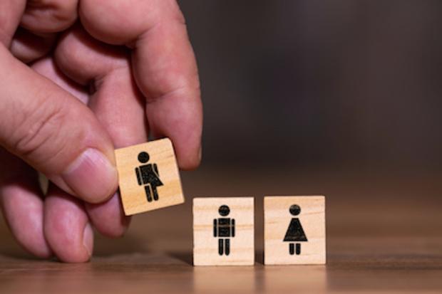 gender gender-forschung post-gendering Gender-Mainstreaming Transgender-Toiletten transgender Gender GMF und Rechtsextremismus