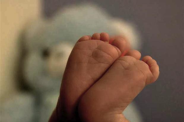 deutscher-bundestag ethik leben praeimplantationsdiagnostik behinderung