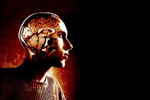 gehirn neurologie freier-wille