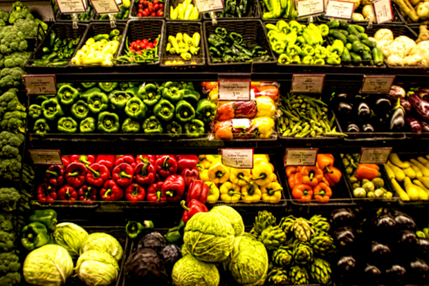 gesundheit fast-food fleisch bio esskultur