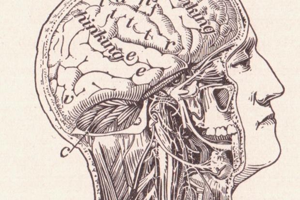 frankfurter-allgemeine-zeitung google internet wissen neurologie frank-schirrmacher erinnerung