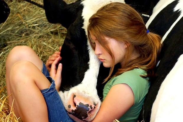 ethik nahrung vegetarismus tier