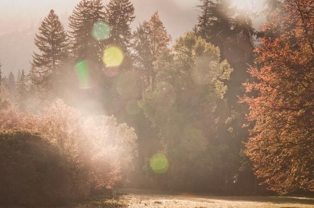natur frauenbild frauenquote grossstadt landleben