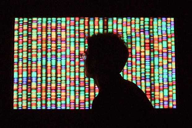evolution genetics