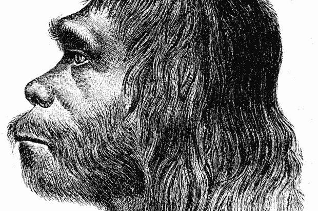 menschenbild gentechnik darwinismus