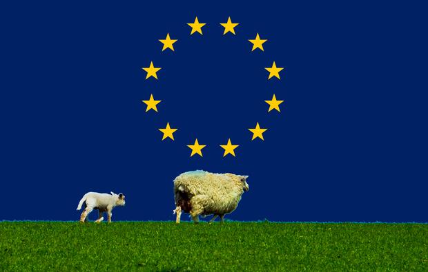 usa barack-obama europaeische-union ueberwachung realpolitik prism
