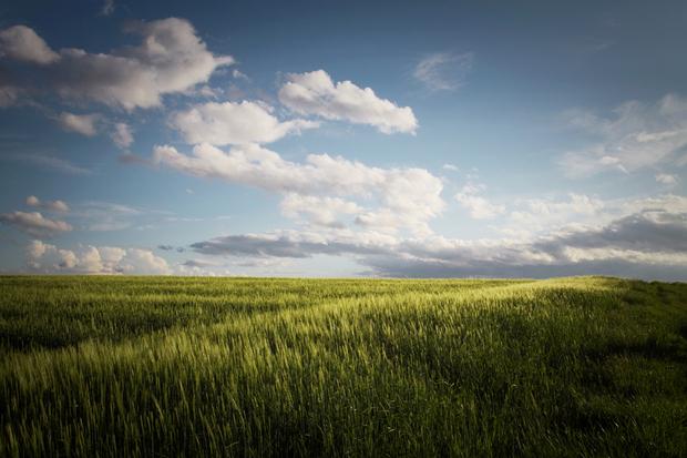 nature Seneca landscape live happiness Christian Harisch