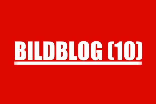 bild mediengesellschaft stefan-niggemeier