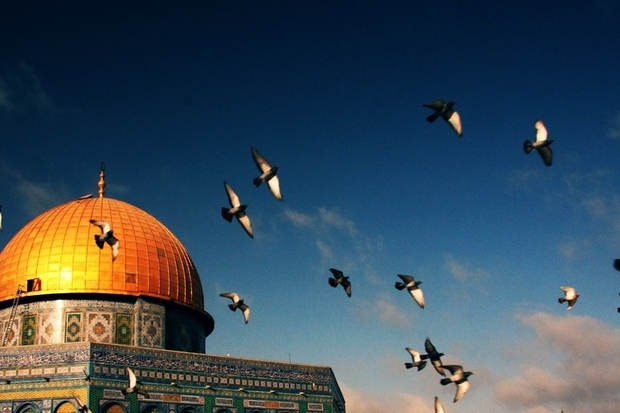 israel krieg konrad-adenauer-stiftung antisemitismus