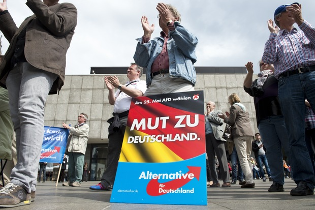 rechtsextremismus AfD